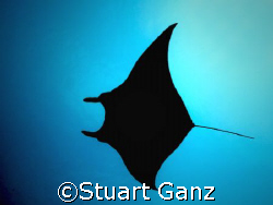 Devil in the sky by Stuart Ganz 